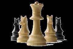 نتایج مسابقات شطرنج جام رمضان در جزیره کیش